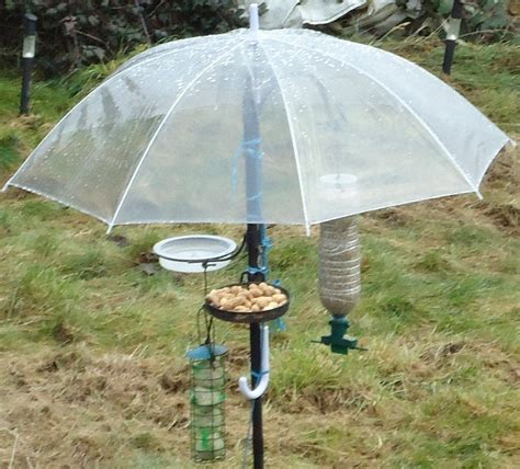 how to make a rain guard for bird feeder here s a diy baffle or guard diy bird feeders bird feeder bird and