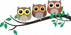 Library of owls in a tree image free download png files ...