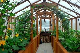 Indoor Gardening Beginners
