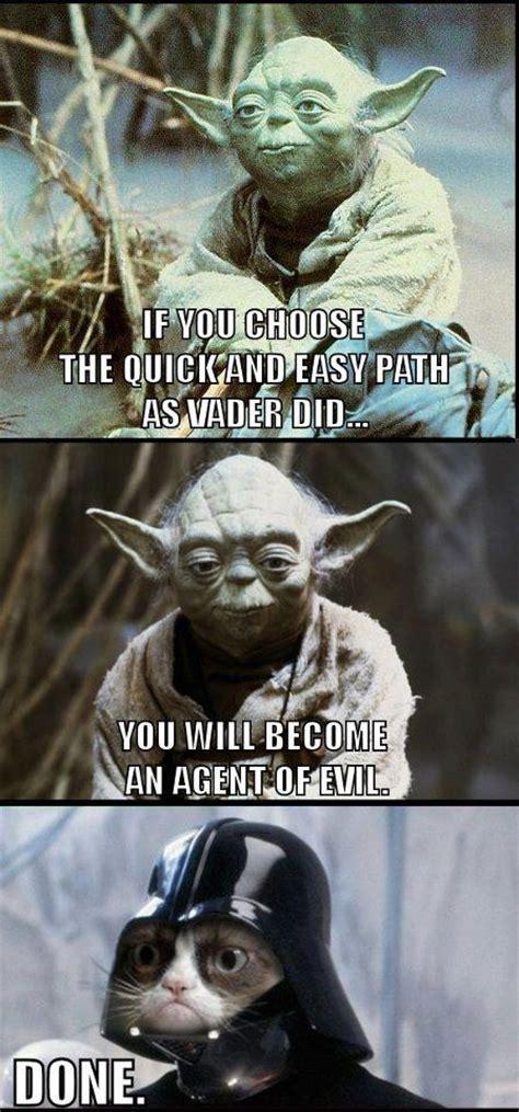 Star Wars Cat Meme - grumpy cat vader