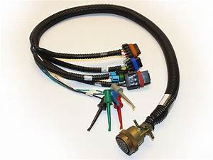 Cable Assemblies And Wire Harnesses