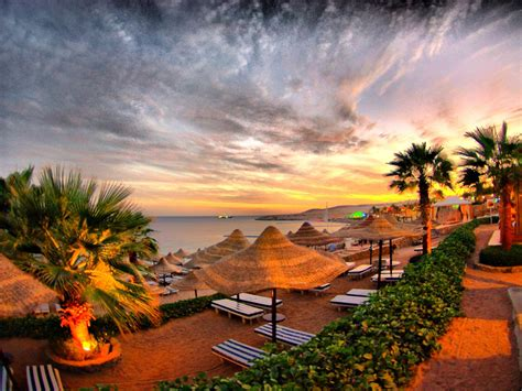 Holiday Sea Sand Beach, Palm Trees Umbrella Straw Chair Of ...