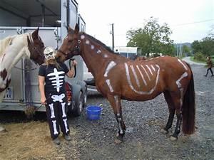 Déguisement Halloween Fait Maison : deguisement halloween fait maison page 1 ~ Melissatoandfro.com Idées de Décoration
