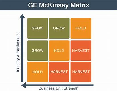Matrix Ge Mckinsey Portfolio Management Program Strategy