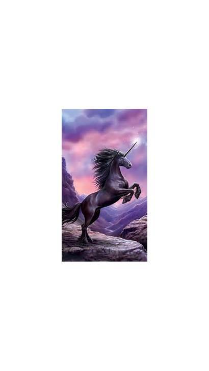 Unicorn Wallpapers Iphone Resolution Backgrounds Ipad Screen