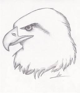 Best 25+ Easy animal drawings ideas on Pinterest | Simple ...