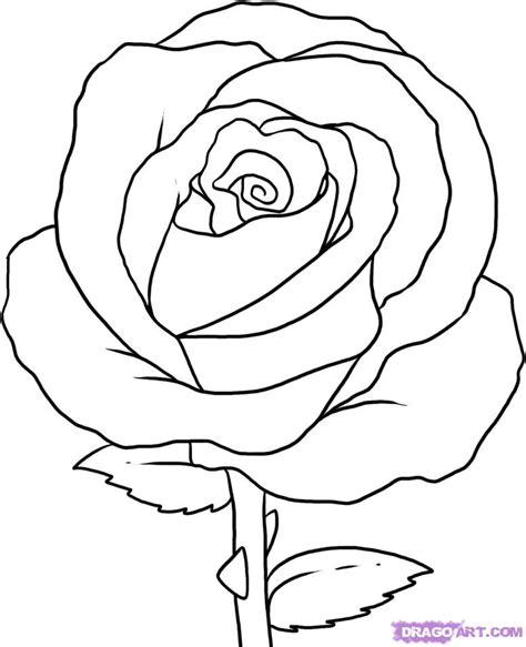 honovylys rose drawing images
