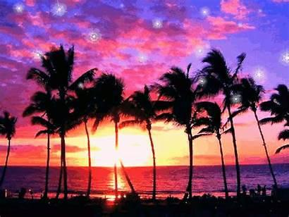 Gifs Glitter Sunset Purple Ocean Nature Graphics