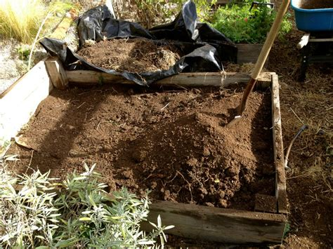 Drought Tolerant Raised Beds