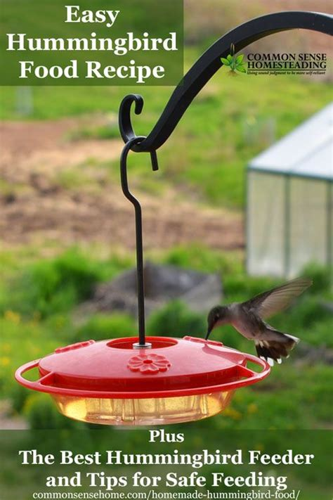 diy hummingbird food diy hummingbird food nifty diys