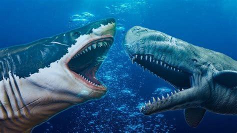 Blue Whale vs Megalodon Shark