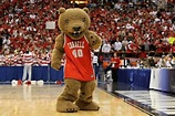 Cornell Big Red mascot, Big Red Bear | College Mascots ...