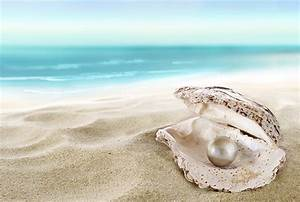 Wallpapers Pearl Beach Sea Nature Sand Shells