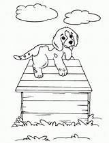 Hound Coloring Pages Dog Printable Bassett Basset Sheets Adults sketch template