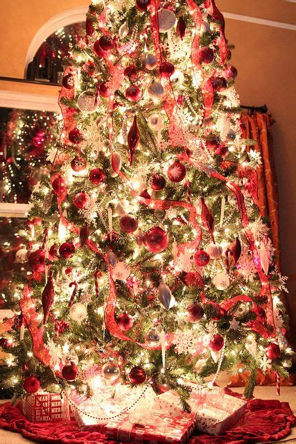 reason for christmas trees reason 92523 to stop using auto mode photographing the tree photography