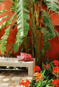 Imagenes De Patios Pequenos Con Plantas