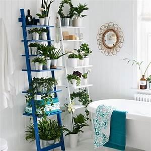 Plante Verte Salle De Bain : quelles plantes pour une salle de bains marie claire ~ Melissatoandfro.com Idées de Décoration