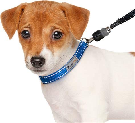 thundersnap dog leash black small chewycom