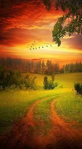 Country Pastures | Paisajes y jardines | Naturaleza ...