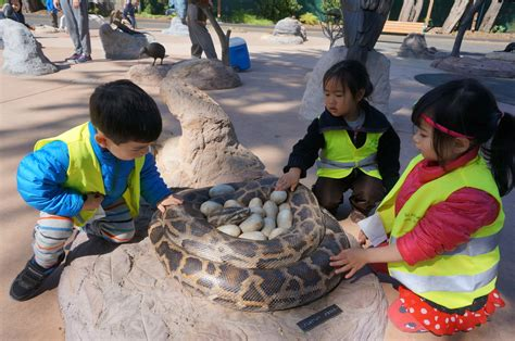 with mandarin preschool and daycare san francisco 331 | DSC05921