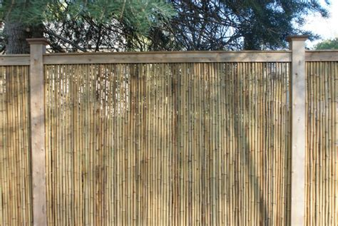 bamboo fencing rolls bamboo fencing rolls dop designs 4294