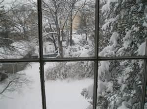 blizzard curculio michael hendry