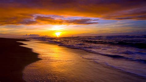 Golden Sunset On The Beach Images Hd Wallpapers
