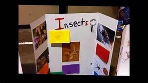 2nd Grade Science Fair 2013