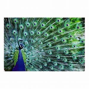 Tableau Maison Du Monde : tableau paon en plexi 80 x 120 cm sao jo maisons du monde ~ Teatrodelosmanantiales.com Idées de Décoration