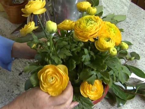 budget friendly flower arrangements hgtv