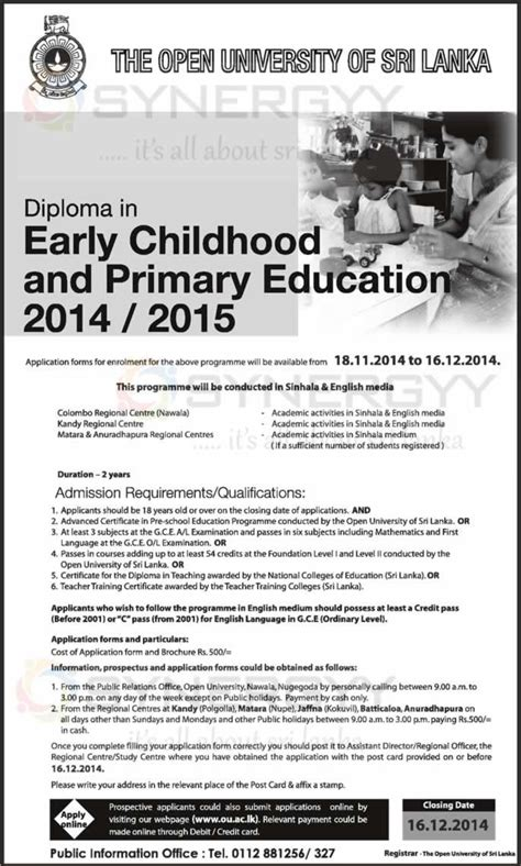 diploma  early childhood  primary education