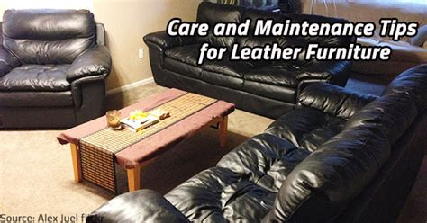 leather sofa care tips care and maintenance tips for leather furniture