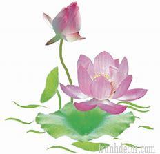 Image result for tranh hinh dong trang va hoa