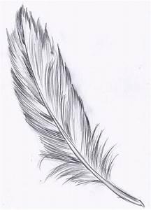 Dessin De Plume Facile : tatouage plume signification et 20 id es de tatouage d couvrir ~ Melissatoandfro.com Idées de Décoration