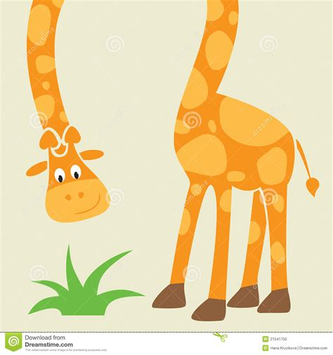 giraffe funny cartoon greeting card stock photo image