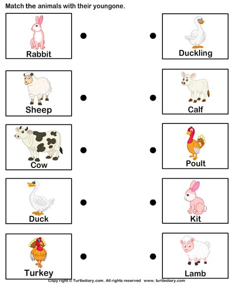 baby animals names worksheet farm animals and their babies worksheet turtle diary