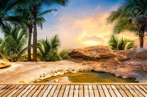 Free Nature Backgrounds by Nature Background Images 52dazhew Gallery