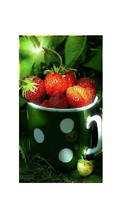 Fruits Legumes Gifs