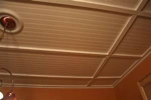 Wonderful Decorative Drop Ceiling Tiles — John Robinson