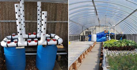 vertical aquaponic system diy crafts