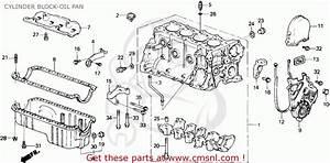 1992 Honda Accord Alternator Fuse Location Suzuki Grand Vitara Alternator Fuse Wiring Diagram