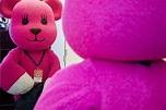 療癒粉紅偶像 MOMO熊20周年特展 - MOOK景點家