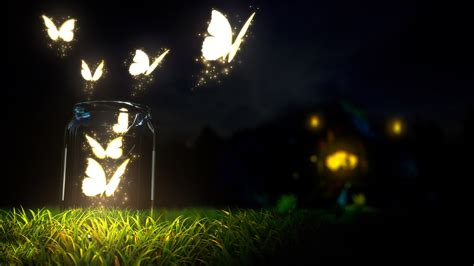 Animated Butterfly Wallpaper For Mobile - butterfly bottles lights digital wallpapers hd