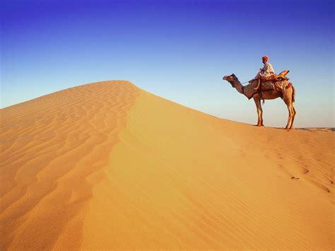 thar desert wallpaper sand india dune desert camel thar