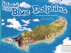 Related Keywords & Suggestions for island blue dolphins