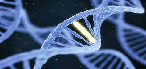 Modification To Dna by Tiny Dna Modification Has Big Impact On Deadly Tumours