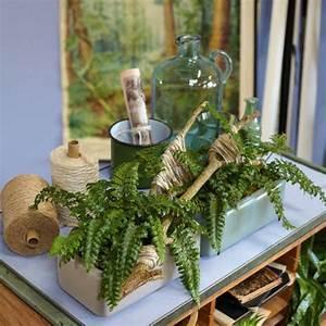 Hängende Pflanzen Für Draußen : zimmerpflanzen deko ideen ~ Sanjose-hotels-ca.com Haus und Dekorationen