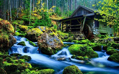 3d Animated Nature Wallpaper - nature 3d wallpapers wallpaper cave