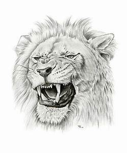 143 best Lion images on Pinterest | Tattoo ideas, Drawings ...