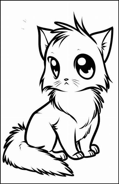 Draw Drawing Coloring Kitten Anime Animal Pages